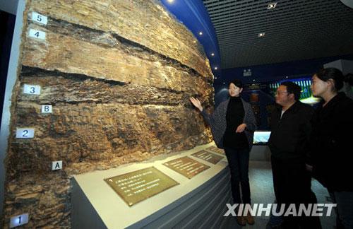 澄江动物化石群博物馆工作人员介绍化石群