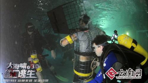 云影3d新作《大海啸之鲨口逃生》终结国庆档