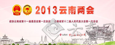 2017云南经济总量排名_云南经济管理学院