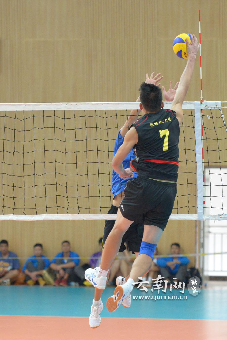 排球比赛中,昆明理工大学战胜对手,大力扣球瞬间高清图片