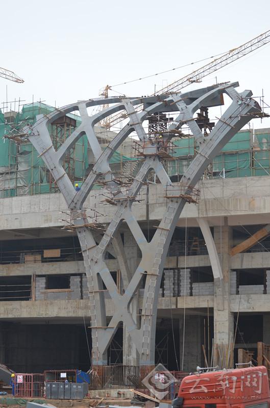 已基本完成的外弧网格7个区域的钢结构着地部分外形