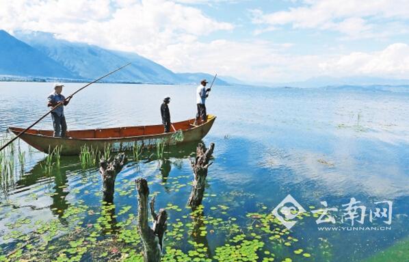 今年以来,大理州继续加大对洱海的治理力度,环湖截污ppp工程建设加快
