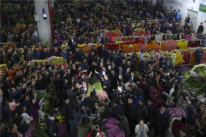 李克强在云南考察1月24日图集