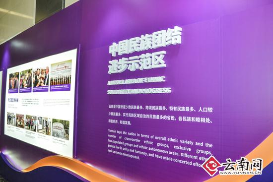 """紫色背景板主题是""""中国民族团结进步示范区""""."""