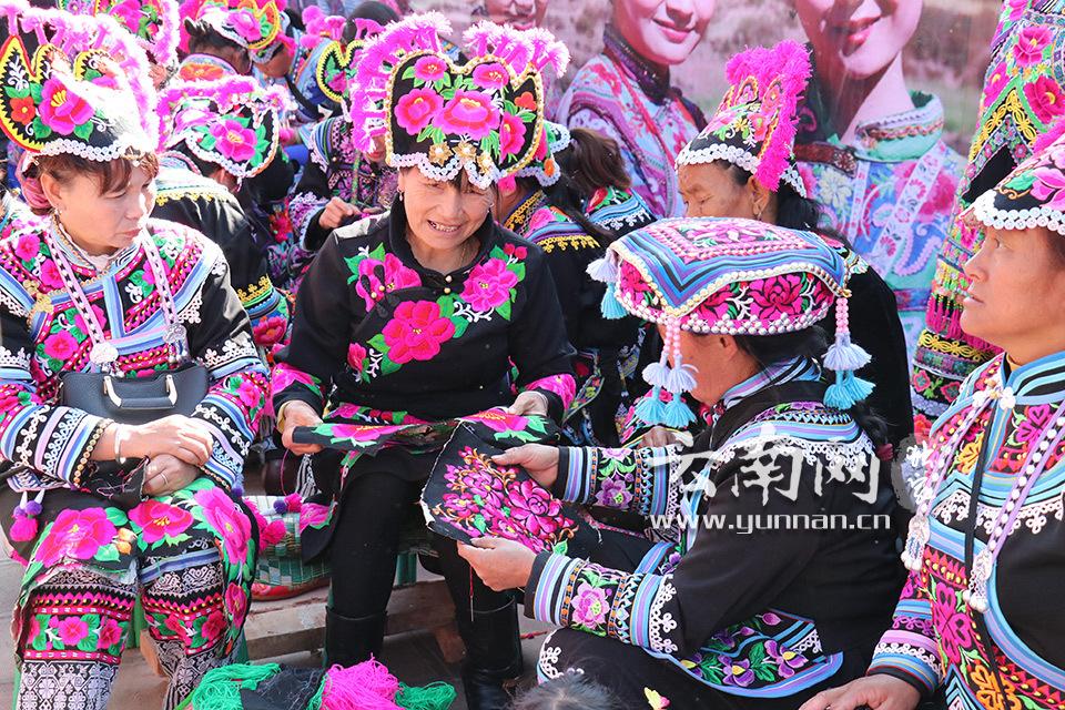 绣女在云南永仁彝族刺绣大赛上亮绝活 高清组图图片