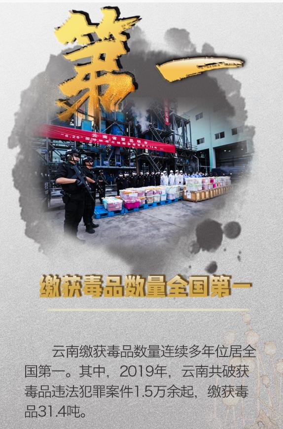 """云南禁毒创造10项""""全国第一"""""""