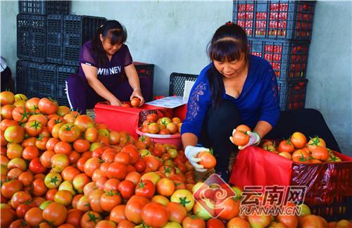 http://www.edaojz.cn/youxijingji/811097.html